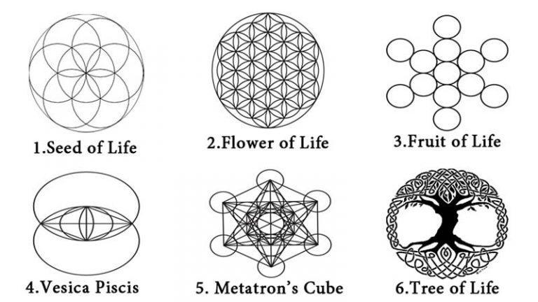 23d8cea242 Il seme della vita. Rappresenta i sette stadi, passi o giorni della  creazione. La creazione di un modello vibratorio di spazio (radiazione  elettromagnetica) ...